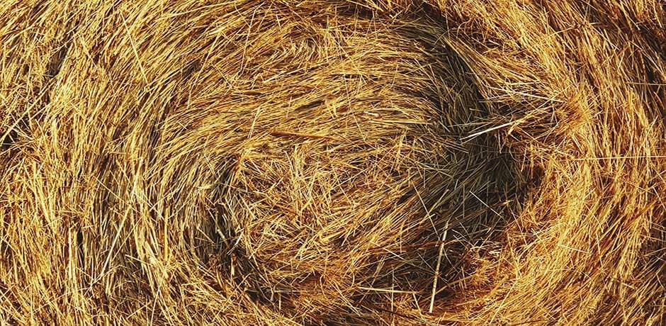 Image of straw