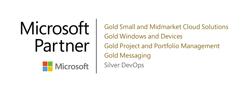 Microsoft Partner Logo 5