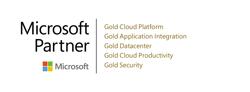 Microsoft Partner Logo 4