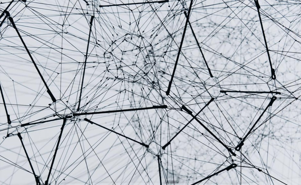 Network of black lines