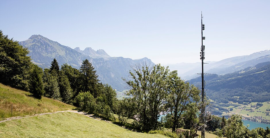 Mobilfunk-Antenne auf Bergwiese