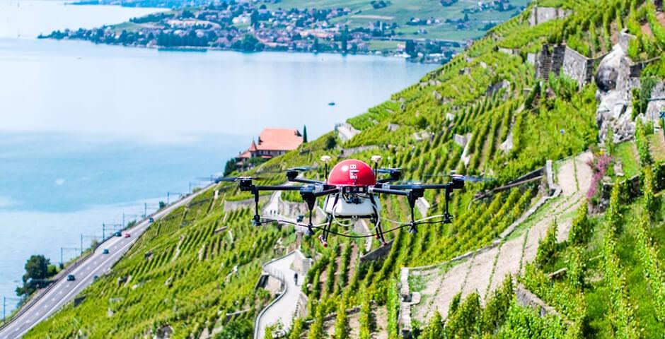Sprühcopter im Weinbaugebiet Lavaux