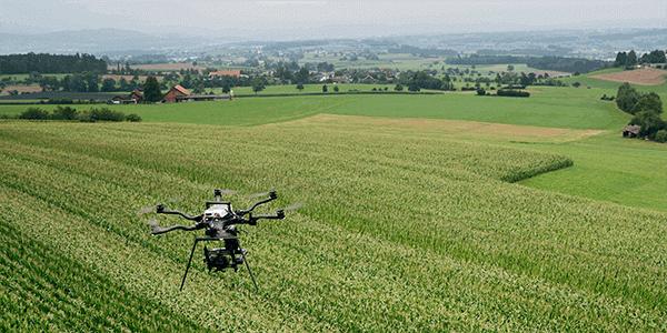«Drone Spotter»