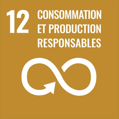 Logo consommation et production durables